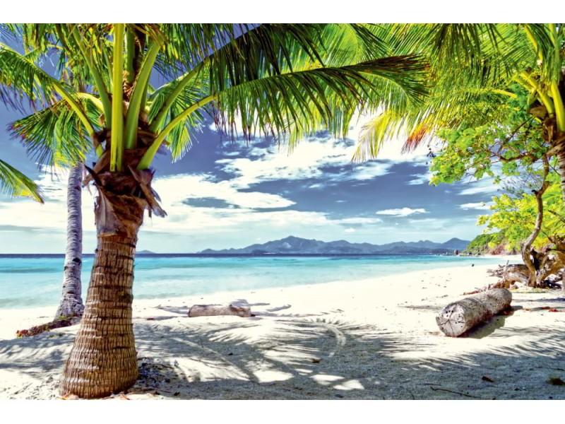 Fototapet grönt träd på en vit sandstrand