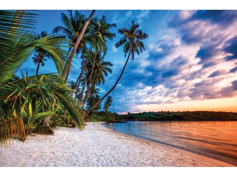 Fototapet tropisk strand vid solnedgången (16942764)