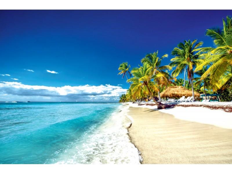 Fototapet tropisk östrand (39298547)