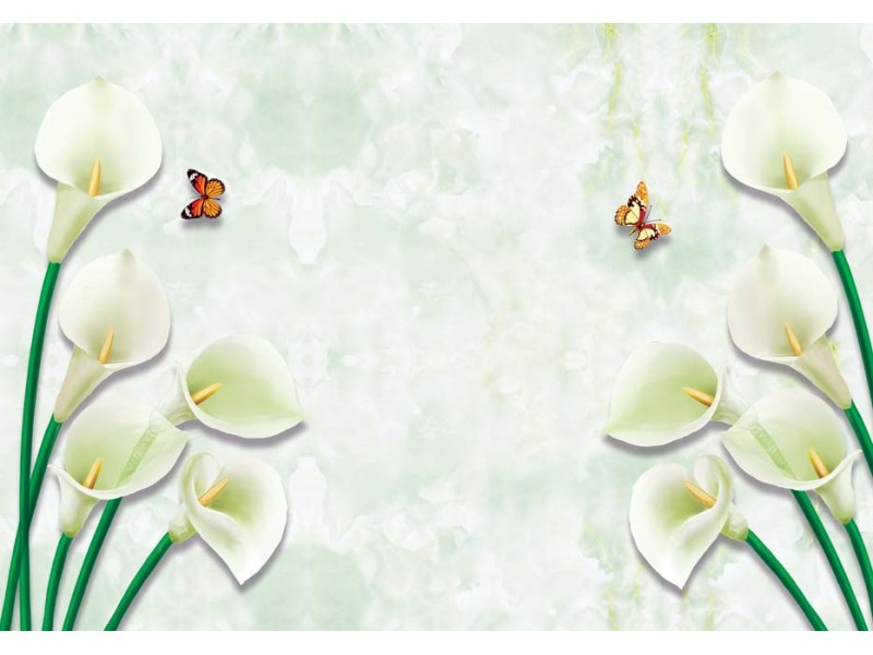Fototapet 3d väggmålning illustration med dekorativa vita blommor och fjärilar (148900972)