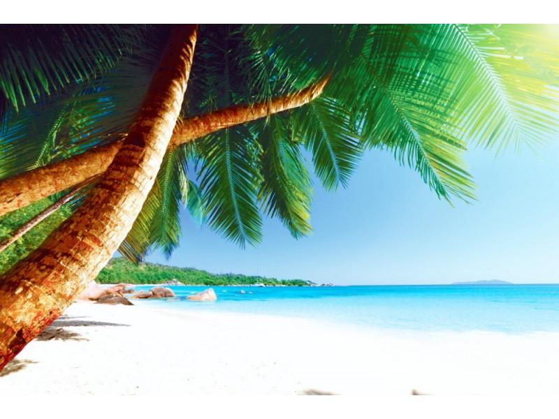 Fototapet Anse Lazio-stranden vid Praslin-ön (Seychellerna)
