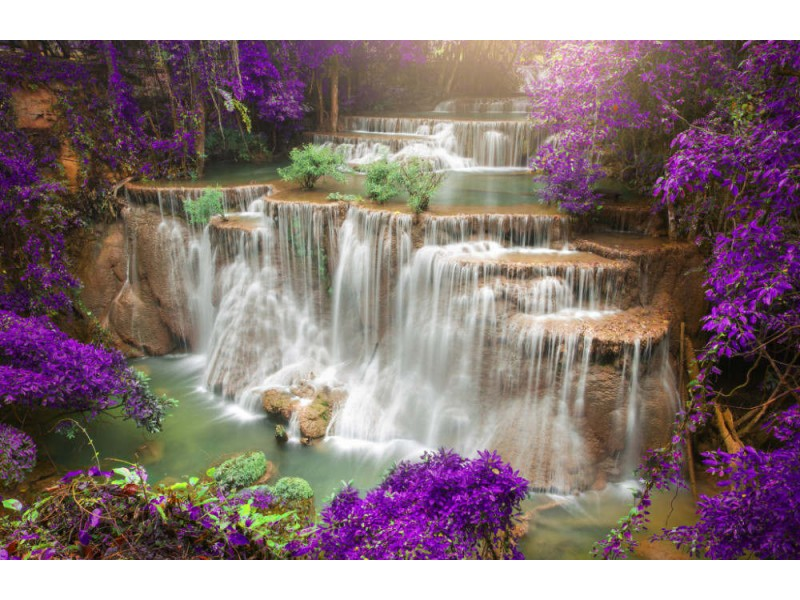 Fototapet Deep Forest Waterfall