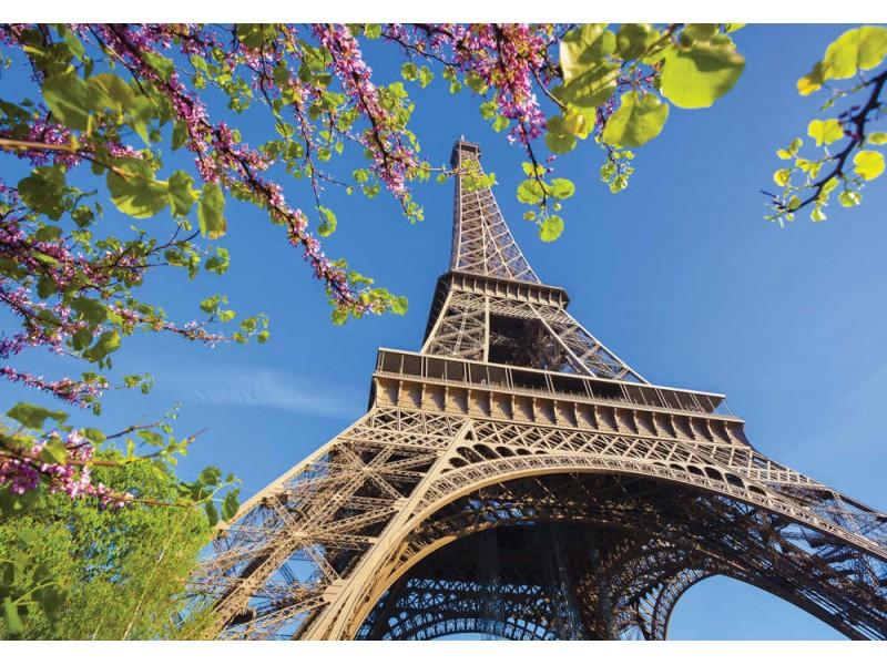Fototapet Eiffeltornet med vårträd (38569417)