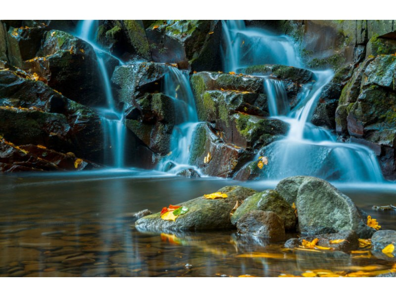 Fototapet Flowing Stream And Waterfall In Forest