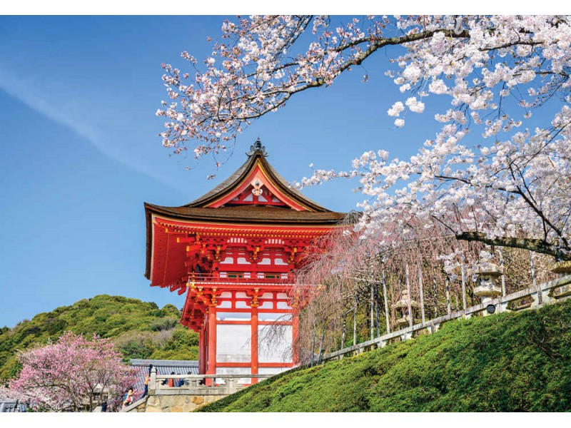 Fototapet Kiyomizu-dera-templet på våren i Kyoto (36657902)