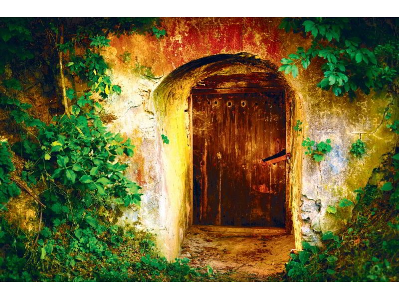 Fototapet gammal entrédörr in i vinkällaren (41256227)