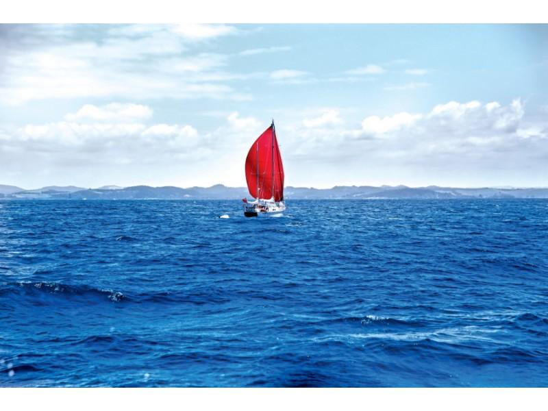 Fototapet röd segelbåt vid hamnen i Russell (New Zeeland)