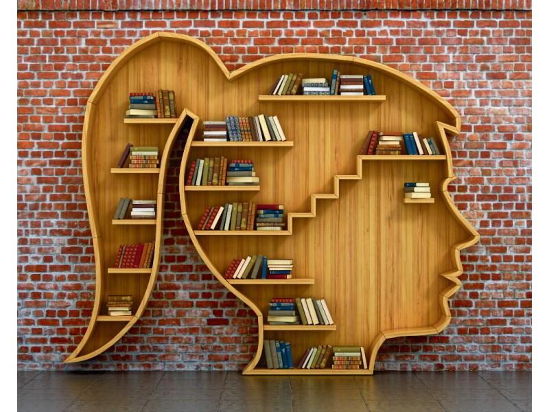 Fototapet bokhylla i form av kvinnligt huvud (46068809)