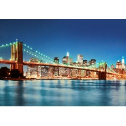 FOTOTAPET NEW YORK EAST RIVER